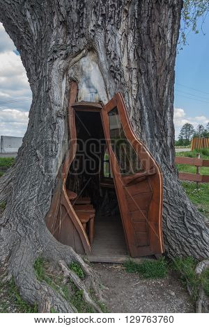 A small room in the trunk of the tree. Country: Poland, City: Chudow, region: Upper Silesia.
