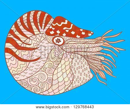 Nautilus with high details. Colored hand drawn zen doodle oceanic animal. Sketch for tattoo, poster, print, t-shirt in zen tangle style. Vector illustration.