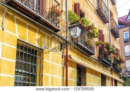 Flowery Balcony With  Geranium Flowers In A City Street.