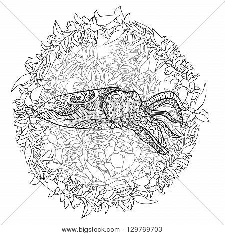 Cuttlefish with high details. Adult antistress coloring page. Black white hand drawn doodle oceanic animal for art therapy. Sketch for tattoo, poster, print, t-shirt in zentangle style. Vector.