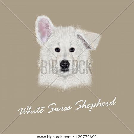 Vector Illustrated Portrait of White Swiss Shepherd dog. Cute white fluffy face of domestic puppy on beige background.