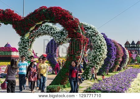 Dubai Miracle Garden With Over Million Flowers
