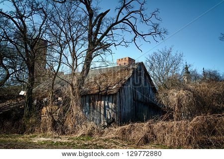 Wooden barn haunted place, weeds and bushes