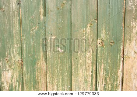 Painted wood which is weathered and distressed