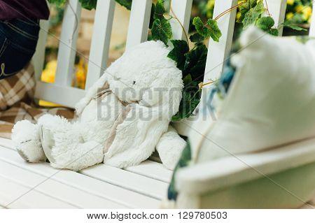 White Toy Rabbit Lies On  Bench