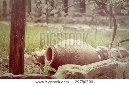 earthen vessel for storing wine in the vineyard