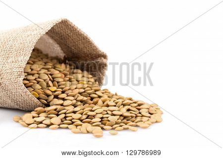 French Green Lentils In Sack