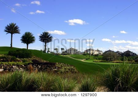 Landscaping At Golf Resort
