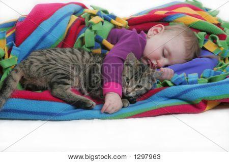 I Love My Kitten