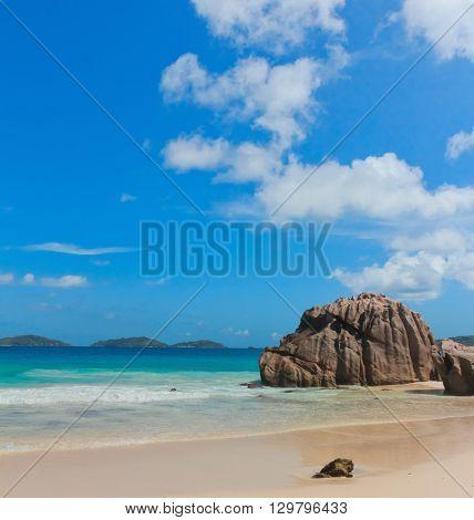 Rocky Beach Sunlit Sea Foam