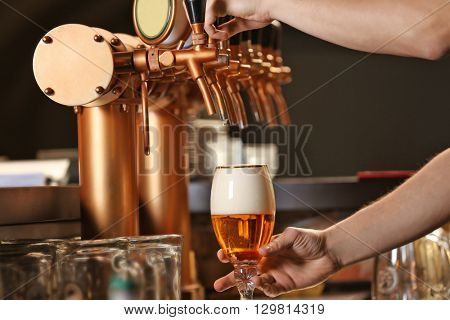 Barman hands pouring a lager beer in a glass.