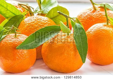 Ripe orange mandarins with green leaves in backlight close-up. Selective focus