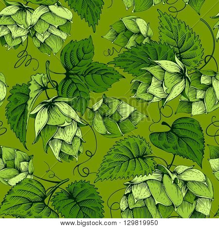 Vintage seamless pattern with green hops and leaves. Hops hand drawn in artistic engraved style. Vector illustration.
