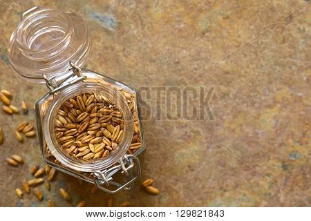 Toasted oat grains in swing top jar photographed overhead on slate with natural light (Selective Focus Focus on the top of the oats)