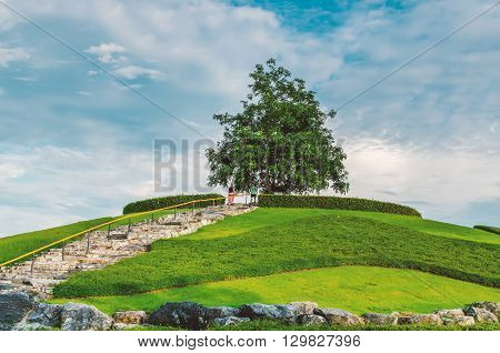 Green Little Planet With Grass On Its Surface The Man And Women Stay To Alone Tree Artificial Grass
