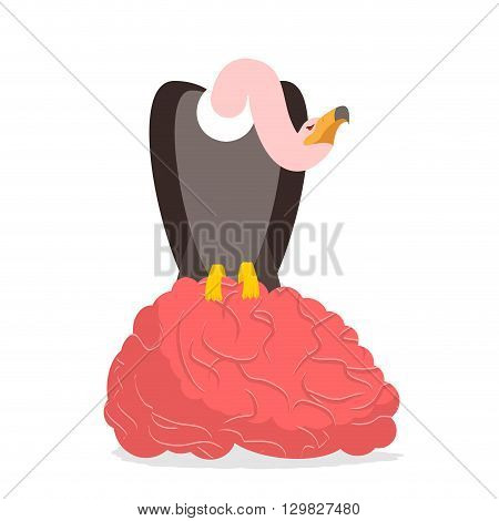 Vultures And Brain. Griffon Bite Mind. Condor And Entral Nervous System. Griffon Vulture Eating. Sca