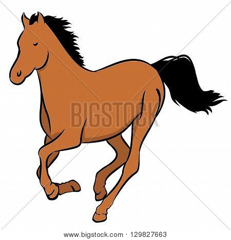 Illustration of a wild brown horse on a white background