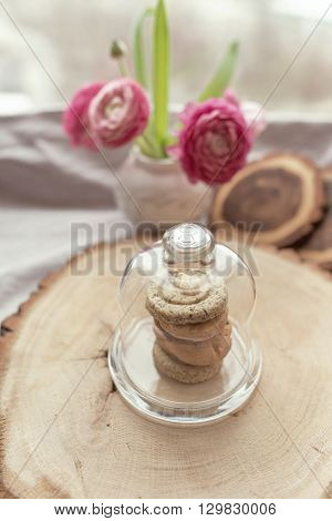 on a wooden stump in a closed glass vase stack of cookies