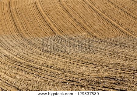 Beautiful Summer Rural Landscape Lines