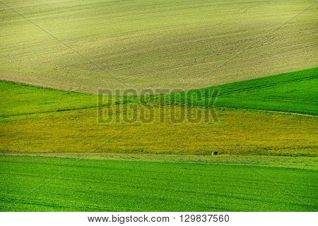 Beautiful Green Spring Rural Landscape