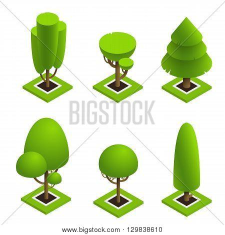Isometric elements for landscape design isolated . Set isometric trees on white background. Isometric vector illustration