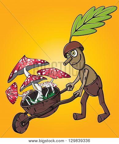 forest oak man picking mushrooms autumn season design