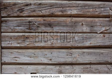 wood texture - a wall built of logs