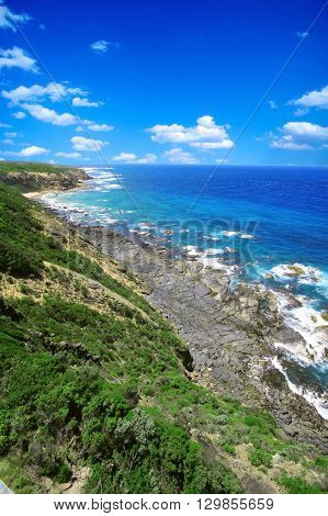 Sea view in Austrailia with green forground and blue sky