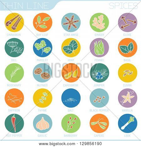 Flat design spices vector interface icon set.