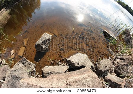 Landscape fisheye-photo of lake, forest and reeds.