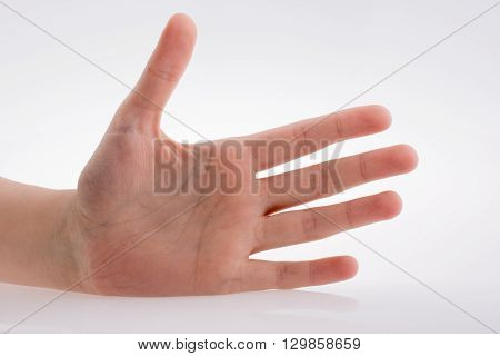 Human hand pointing on a white background