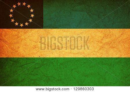 Rio Negro Flag