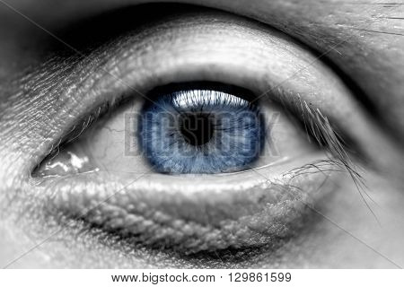 Blue eye men. Close-up Macro black and white
