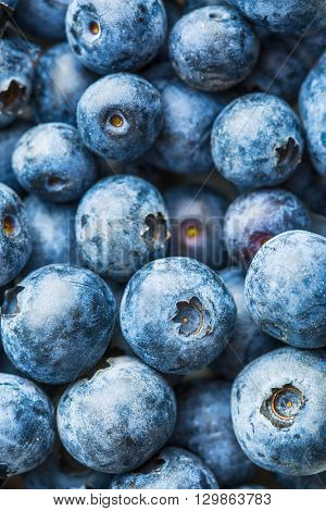 Tasty blueberries fruit. Blueberries are antioxidant organic superfood.