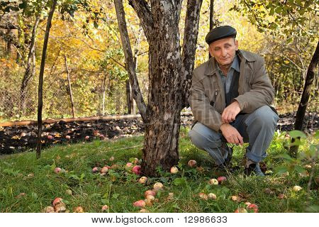 Thoughtful middle-aged man sit under apple-tree in autumnal garden