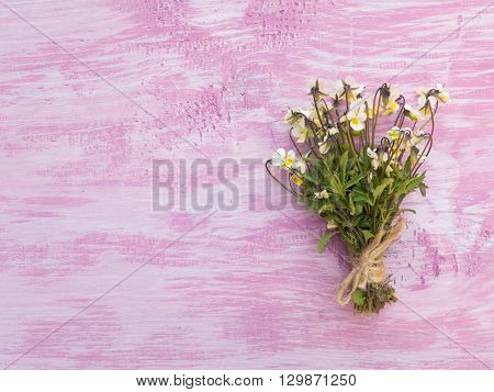 Wild yellow pansy flowers bouquet tied with jute rope on the rustic violet painted background