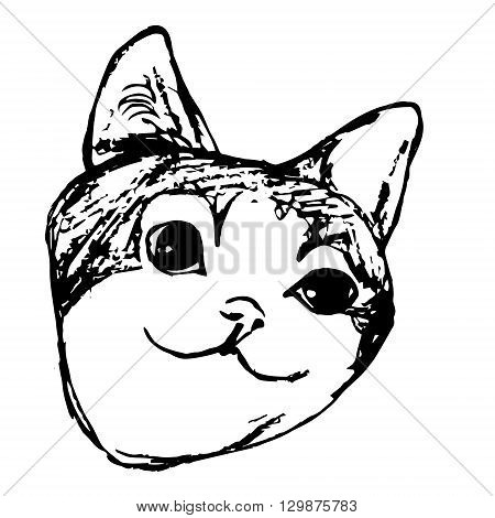 Graphic image of a cat. Cat with big eyes muzzle.Abstract pattern on white background vector