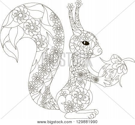 Zentangle, stylized black and white hand drawn squirrel with hazelnuts, vector illustration