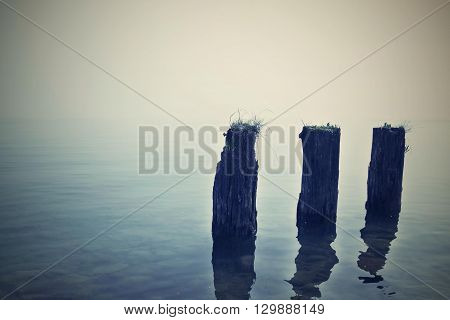 old three wooden a stub stick out isolated over a surface of sea water in the evening and a blank space for the text