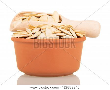 The cup and scoop pumpkin seeds isolated on a white background.