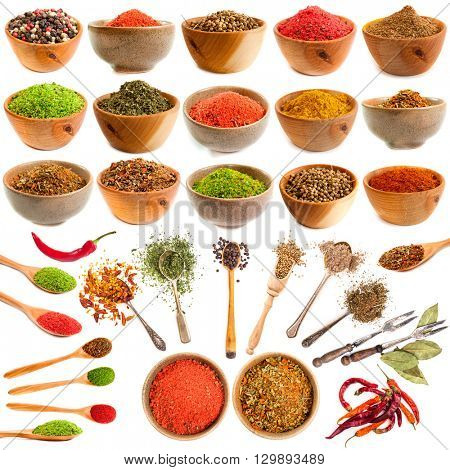 Collection of spice and herb  isolated on white background