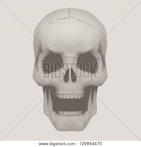 Human skull with open mouth in vintage halftone sketch style. Vector Illustration isolated on background.