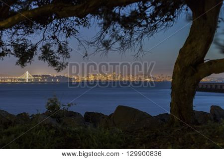 Quiet night view across San Francisco Bay.