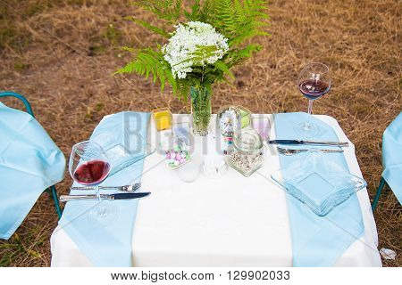 Serving table decoration on nature. picnic outdoors