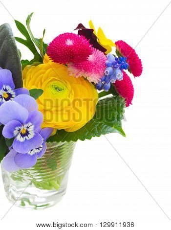Posy of pansies, daisies and ranunculus close up isolated on white background