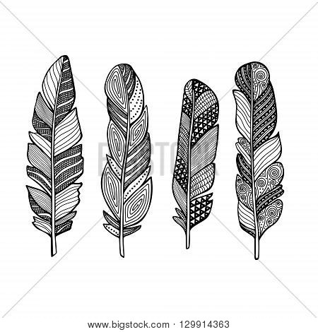 Doodle feather vector set. Hand drawn feathers with doodle ornament.