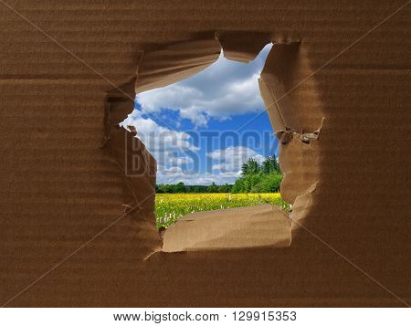 Spring landscape seen through hole in cardboard