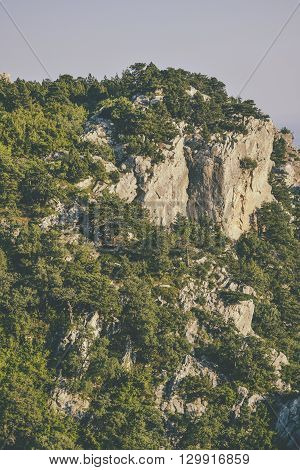 natural background cliff covered with forest Crimea filter