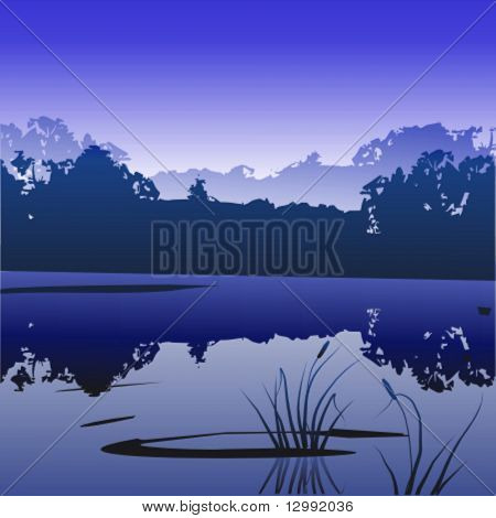 Sumpf (Nacht)