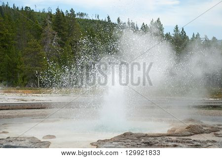 Eruption of Sawmill Geyser at Yellowstone National Park